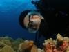 kona-diver-eel.jpg
