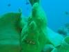 alona-beach-nurkowanie-5
