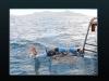 nurkowanie-na-truk-1
