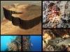 chorwacja_wyspa_bracz-nurkowanie1