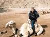 camelsafari2.jpg