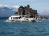 dauin-dumaguete-apo-island-diving-15
