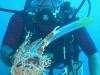 dominikana-diving-2-2
