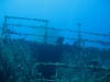 dominikana-diving-2-4