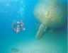 corfu-diving-15.jpg