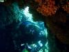 corfu-diving-8.jpg