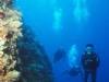 diver-013.jpg
