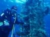 diver02.jpg