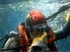 lestratit-medas-podwodne-6.jpg