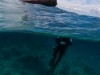 nurkowanie-maluku-3