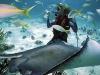 nurkowanie_kostaryka-5