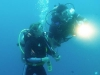 diving_4.jpg