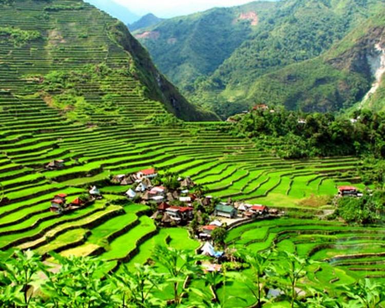 tarasy-ryzowe-filipiny-banaue-5