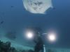 nurkowanie-raja-ampat-kri-island-1