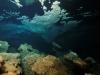 sardynia-nurkowanie5