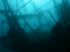 brac-nurkowanie-10