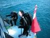 brac-nurkowanie-2