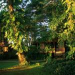 walindi bungalow
